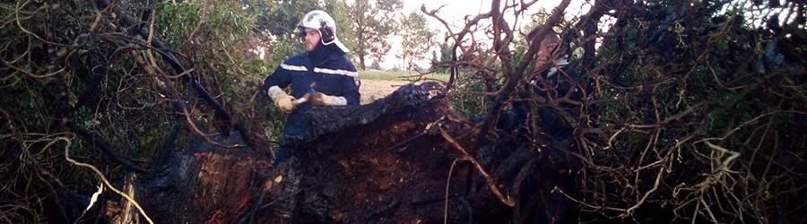 Les pompiers de Cruzilles éteignent un feu de haie