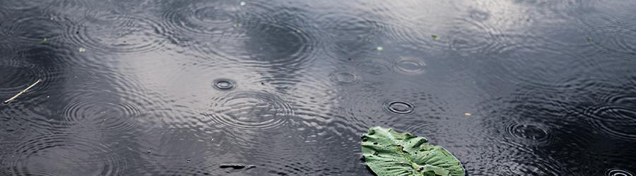 Vigilance orange pluie-inondation à Cruzilles-lès-Mépillat et dans l'Ain